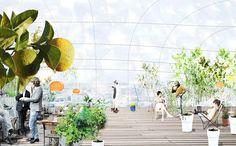 selgascano-drivhus-greenhouse-stockholm-city-planning-and-administrative-office-sweden-urban-design-designboom-02