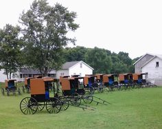 """Buggies in a Row"" by: Cindy Welch"