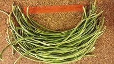 """Yard-long"" beans"