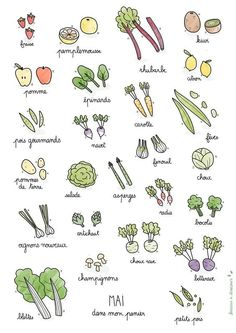 Discover recipes, home ideas, style inspiration and other ideas to try. Fruit Doodle, Chou Rave, Food Doodles, Bujo Doodles, Watercolor Projects, Vegetable Seasoning, Pin On, In Season Produce, Bullet Journal Inspiration