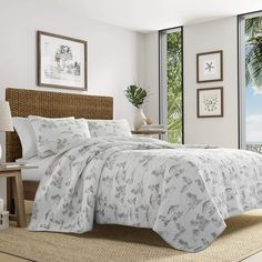 Tommy Bahama Brolly Beach Quilt Set, King, Pastel Grey *** Learn more by visiting the image link. (This is an affiliate link) Beach Bedding Sets, Coastal Bedding, Luxury Bedding Sets, Comforter Sets, Bedding Decor, Nautical Bedding, Modern Bedding, King Comforter, Bedroom Decor