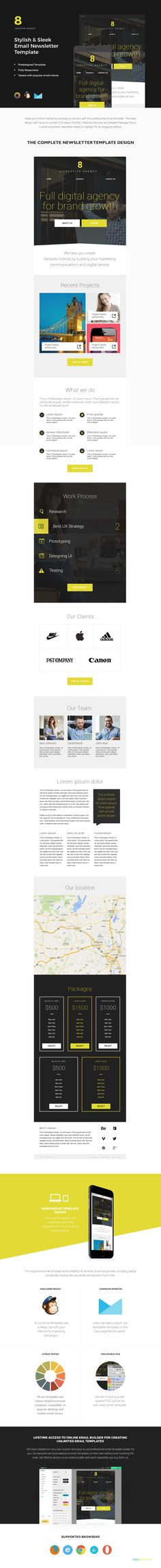 Email Newsletter Templates Bundle By ZippyPixels On - Campaign monitor html templates