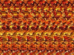 magic eye picture - I could never see these!