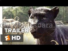 The Jungle Book Official Teaser Trailer #1 (2016) - Scarlett Johansson, Bill Murray Movie HD - YouTube #dogwalking #dogs #animals #outside #pets #petgifts #ilovemydog #loveanimals #petshop #dogsitter #beast #puppies #puppy #walkthedog #dogbirthday #pettoys #dogtoy #doglead #dogphotos #animalcare