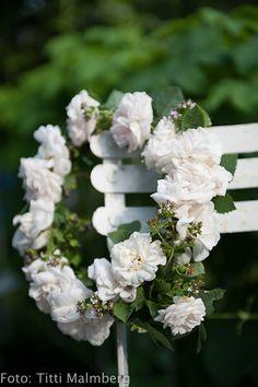 wreath / coronet of white flowers