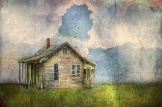 My Little Patch of Blue   by Distressed Jewell