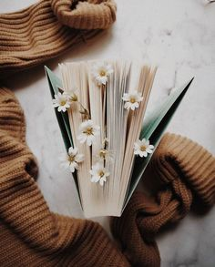 (ENG below) (POL) Znacie to uczucie, kiedy książka wciągnie Was tak mocno, ż. Flower Aesthetic, Aesthetic Art, Aesthetic Pictures, Spring Aesthetic, Aesthetic Backgrounds, Aesthetic Iphone Wallpaper, Aesthetic Wallpapers, Aztec Wallpaper, Book Wallpaper