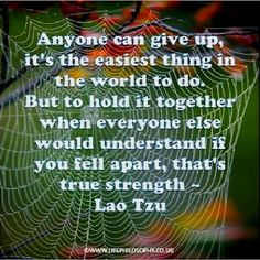 Anyone can give up, it's the easiest thing in the world to do. But to hold it together when everyone else would understand if you fell apart, that's true strength. ~ Lao Tzu
