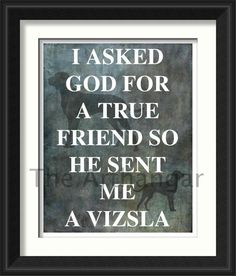 Vizsla Quote Print by TheArtHangar on Etsy