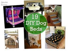 Condo Blues: 19 DIY Dog Beds Find Everything you need to re-create these looks at Sleepy Poet Antique Mall!