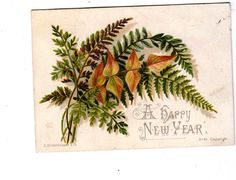 A Happy New Year Ferns Hildesheimer Embossed Vict Card c1880s | eBay