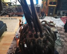 Dread, Dreadlocks Wabeneinteilung Comb Sechseck, Hexagon Dreadlocks, About Hair, Depression, Berlin, Hair Makeup, Make Up, Hairstyles, Thoughts, Beauty