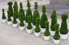 Topiary Chess set