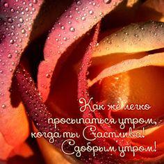Как же легко просыпаться утром, когда ты Счастлива! С добрым утром!