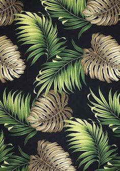 "Graphic design (""Monstera Black"", photography by barkclothhawaii [source], via thevuas) floral pattern design Motif Tropical, Tropical Pattern, Tropical Prints, Palm Print, Tropical Leaves, Hawaii Pattern, Print Texture, Textures Patterns, Print Patterns"