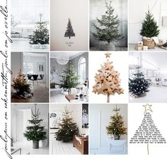 dreaming of a christmas tree...