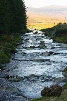 Wicklow mountains, Ireland::Maybe these could be the stepping stones where Bree saves Mikkel from drowning on the day before the Viking raid?