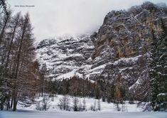 Passeggiata intorno a Pian del Colle (Mario Alesina) ---------- 📸 Mario Alesina #myvalsusa #fotodelgiorno 1817 - 21 dicembre 2020 Mario, Snow, Outdoor, Outdoors, Outdoor Games, The Great Outdoors, Eyes, Let It Snow