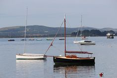 Calm morning on Poole Harbour, Dorset.