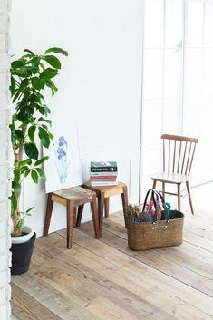 自然光の入る白壁・白窓エリアはナチュラルなシーンを撮影できます。 Studio, Space, Plants, Floor Space, Studios, Plant, Planets, Spaces