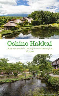 travelyesplease.com | Oshino Hakkai- 8 Sacred Ponds in the Fuji Five Lakes Region of Japan (Blog Post) | Asia