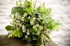 White waxflowers mixed with foliages….