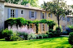 French farmhouse, Russian sage in border separating grass from patio, simple pergola with vines.