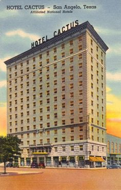 Hotel Cactus Postcard
