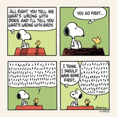 Snoopy & Woodstock. What's wrong with dogs & birds.