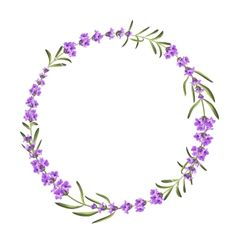 Bunch of lavender flowers on a white background vector Wreath Watercolor, Watercolor Background, Watercolor Flowers, Bunch Of Flowers Drawing, Anklet Tattoos For Women, Lavender Tattoo, Circle Tattoos, Wreath Drawing, Flower Circle