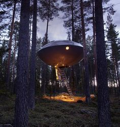 This awesome UFO tree house is one of the many unique rooms available at the Treehotel. The UFO is a spacious hotel room is built for five and has all the amenities of a normal hotel room. Ufo, Beautiful Tree Houses, Amazing Houses, Tiny House, Unusual Hotels, Treehouse Hotel, Futuristisches Design, Interior Design, To Infinity And Beyond