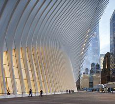 Oculus, World Trade Center Transportation Hub by Santiago Calatrava – Parametric Architecture Parametric Architecture, Futuristic Architecture, Contemporary Architecture, Landscape Architecture, Architecture Design, Chinese Architecture, Architecture Office, New York Architecture, Pavilion Architecture