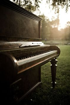piano. I've always wanted to play a piano that was out in the woods or whatever. But it has to be in tune, or else no.