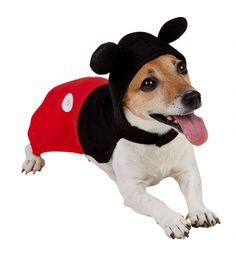 When is a mouse a dog?<br><br>When it\'s wearing this amazing, official Disney Mickey Mouse costume of course!