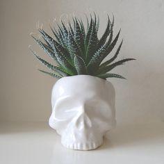 ceramic skull planter // www.shopanomie.com