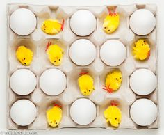 Chicks and eggs - it's Easter!