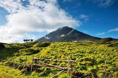 Archipiélago de las Azores · National Geographic en español. · Rutas y escapadas   Pico  Con 2.351 metros, el volcán de esta isla es la montaña más alta de Portugal. Subir hasta la cumbre requiere cuatro horas. El otro aliciente de la isla son sus vinos.