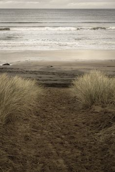 ArtPropelled | northskyphotography:   Beach Path| by North Sky...