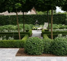 beautiful topiary contemporary garden by André Goemaere