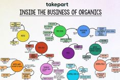Food infographic  Find Out Which Companies You Support When Buying Organic