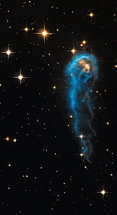 The caterpillar-shaped knot, called IRAS 20324+4057, is a protostar in a very early evolutionary stage. It is still in the process of collecting material from an envelope of gas surrounding it. The object lies 4,500 light-years away in the constellation Cygnus. -