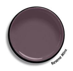 Resene Minx Interior Paint Colors For Living Room, Paint Colors For Home, Paint Colours, Paint Swatches, Color Swatches, Colour Schemes, Colour Chart, Colour Palettes, Resene Colours