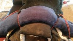 Endurance riding basics: What to carry on your saddle « Karen's Musings & Endurance Ride Stuff