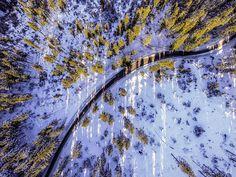 #praded #dji #djiphantom #jeseniky #nature #winter #trees #woods