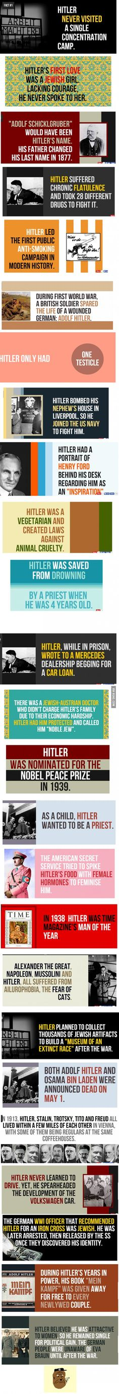 Some Hitler Facts. I am not so sure he didn't go to see one of the camps. As i think i saw a picuter of him there The More You Know, Good To Know, Did You Know, Wtf Fun Facts, Crazy Facts, Random Facts, Odd Facts, True Facts, Life Hacks