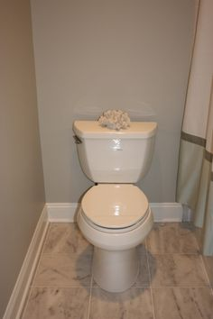 bathrooms - Benjamin Moore Vapor Trails, Kohler toilet; carrera marble floor tile (honed),  Spare bathroom