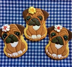 Pugs | Cookie Connection