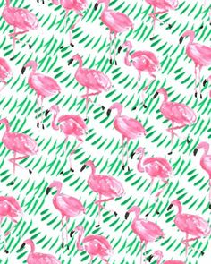 Flamingo Party.