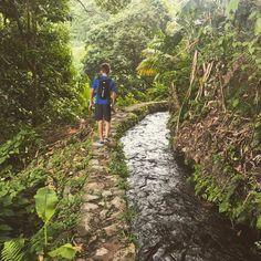 """#Madinina vue par @milouch_ka: """"Forêt luxuriante ... Randonnée sur le canal des esclaves à Fond St Denis Pittoresque et à couper le souffle . #walkinwonderland #jungle #tropical #randonnee #canaldesesclaves #madinina #martinique #river #igers #igworldclub #igworld #ig_martinique"""" #WeLike ! A voir sur Instagram : http://ift.tt/1rQtlPE"""