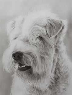 """Original painting """"Hera"""" by Rudy M Vandecappelle - Dry brush - Oil on paper For commissions of any portraits (people, wedding, animals), please visit my website."""